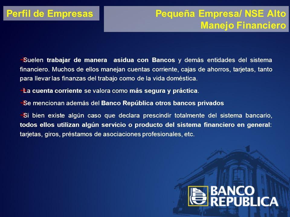 Perfil de EmpresasPequeña Empresa/ NSE Alto Manejo Financiero Suelen trabajar de manera asidua con Bancos y demás entidades del sistema financiero.
