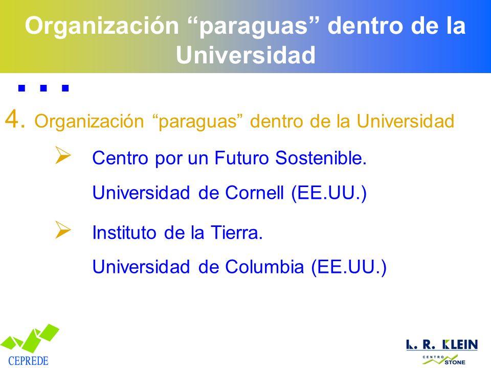 Organización paraguas dentro de la Universidad 4. Organización paraguas dentro de la Universidad Centro por un Futuro Sostenible. Universidad de Corne