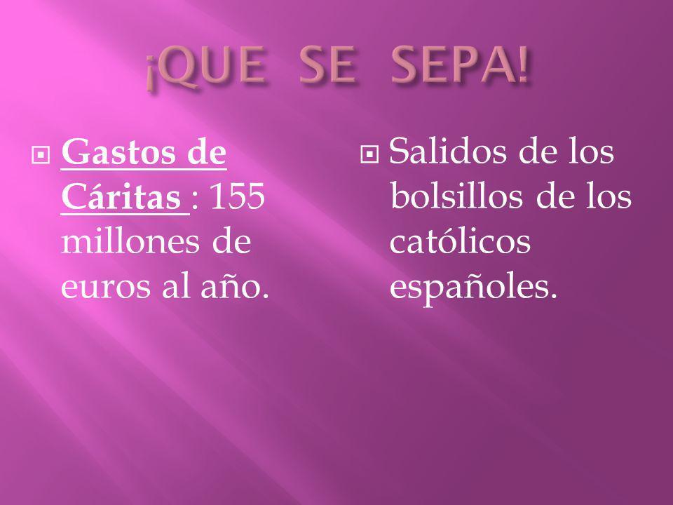 Gastos de Cáritas : 155 millones de euros al año. Salidos de los bolsillos de los católicos españoles.