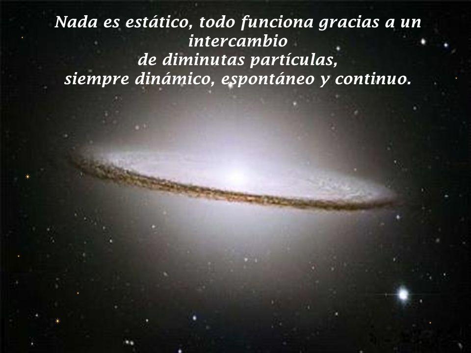El universo es un inmenso campo de energía, en el que opera un poder organizador infinito, que tiene por finalidad, preservar una ininterrumpida conti