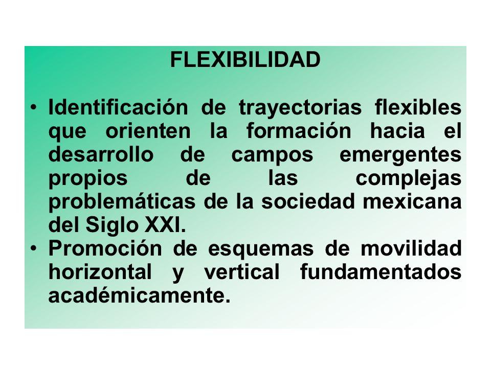 FLEXIBILIDAD Identificación de trayectorias flexibles que orienten la formación hacia el desarrollo de campos emergentes propios de las complejas problemáticas de la sociedad mexicana del Siglo XXI.