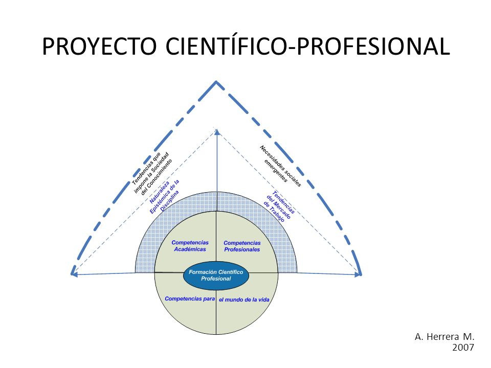 PROYECTO CIENTÍFICO-PROFESIONAL A. Herrera M. 2007