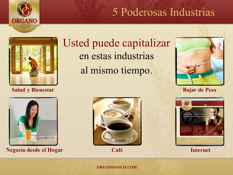 Salud y Bienestar Bajar de Peso Negocio desde el Hogar Internet Café Usted puede capitalizar en estas industrias al mismo tiempo. 5 Poderosas Industri