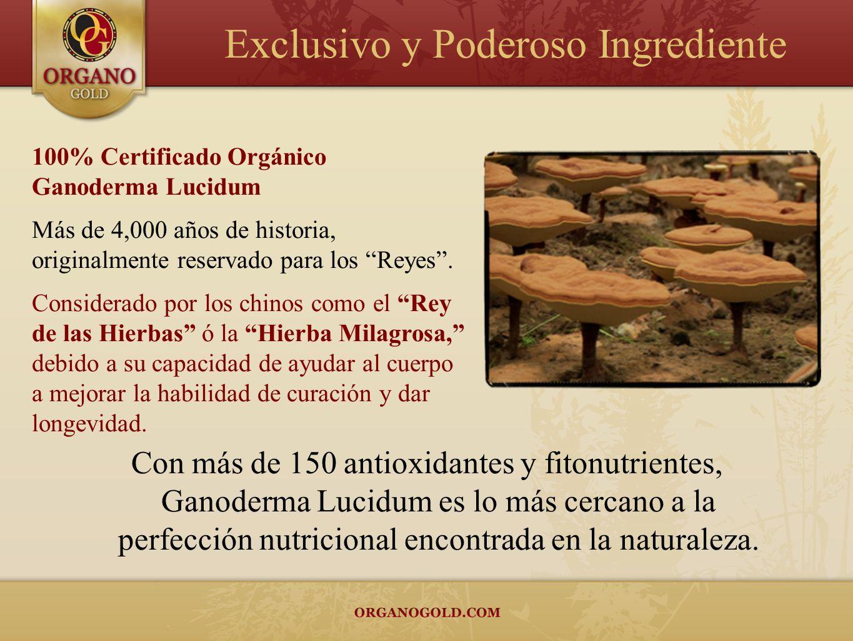 100% Certificado Orgánico Ganoderma Lucidum Más de 4,000 años de historia, originalmente reservado para los Reyes. Considerado por los chinos como el