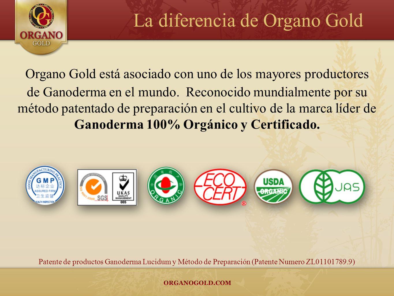 Organo Gold está asociado con uno de los mayores productores de Ganoderma en el mundo. Reconocido mundialmente por su método patentado de preparación