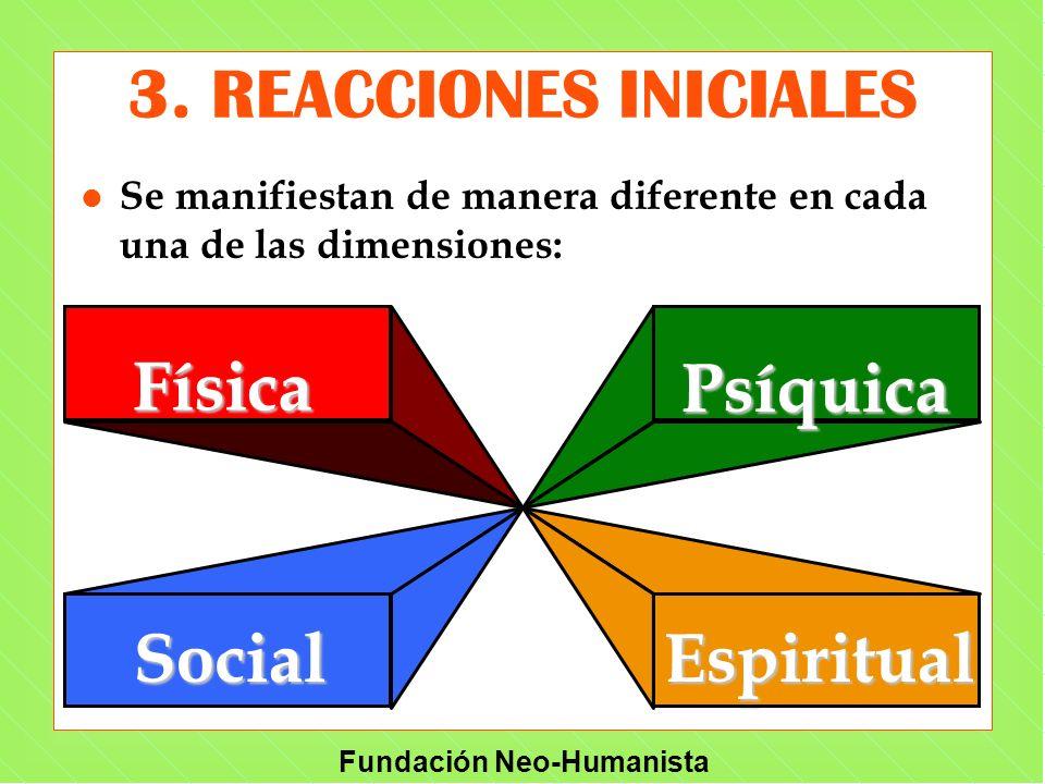 Fundación Neo-Humanista 3. REACCIONES INICIALES l Se manifiestan de manera diferente en cada una de las dimensiones: FísicaPsíquica SocialEspiritual F