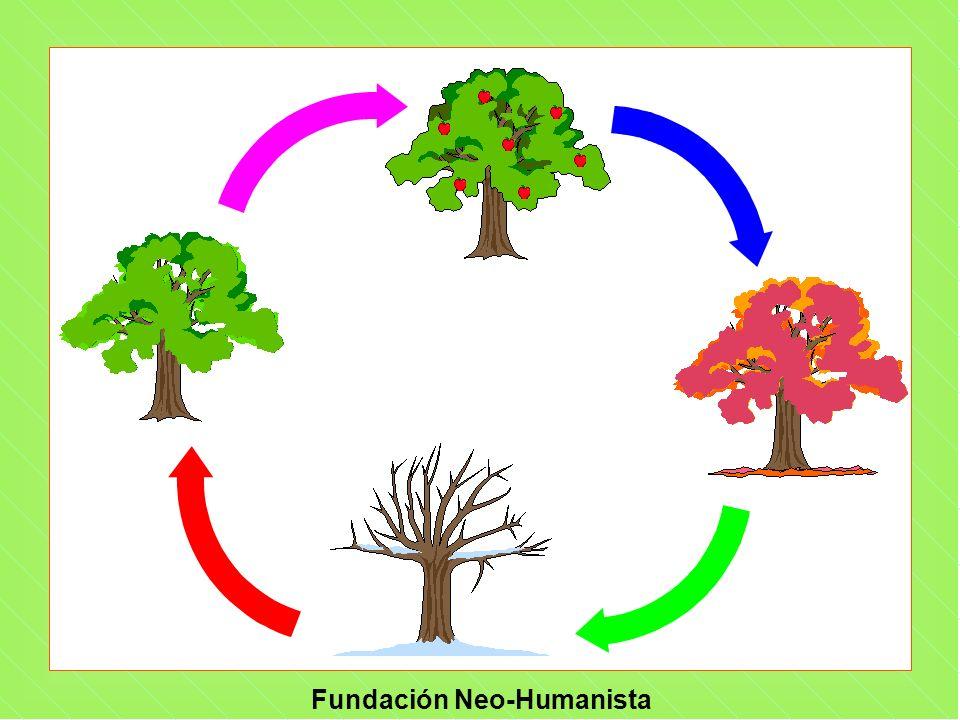 Fundación Neo-Humanista ¿QUÉ SUCEDE.H Algunas veces percibimos lo que no está.