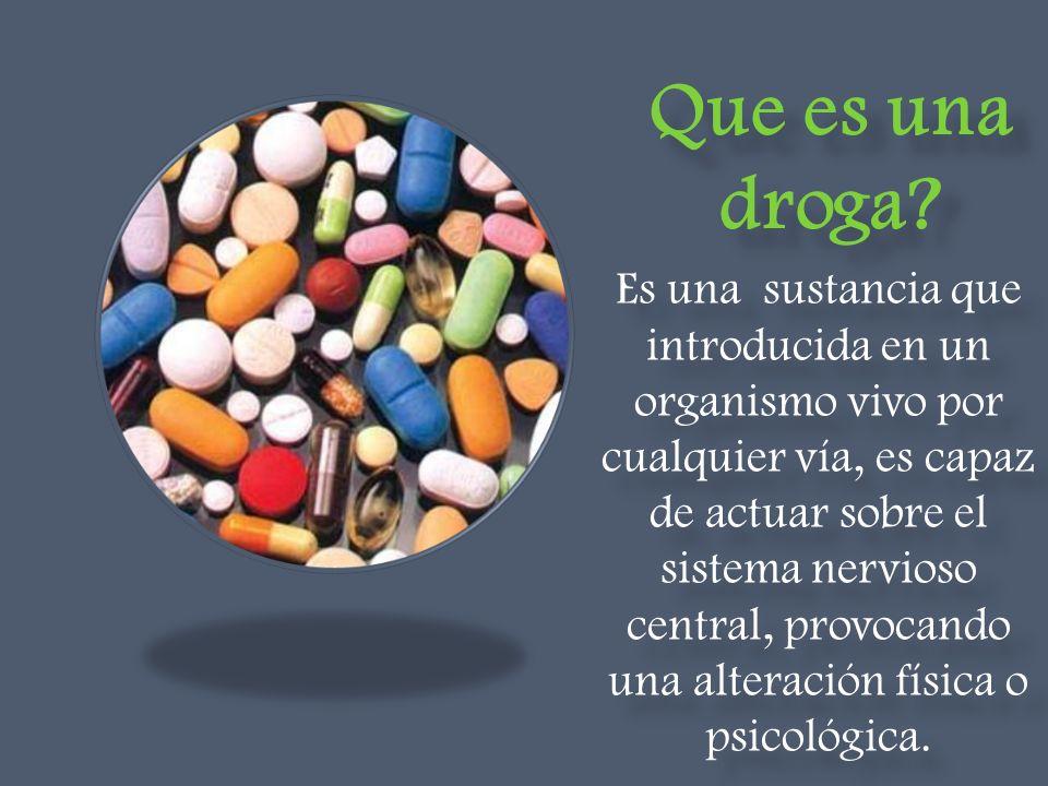 Que es una droga? Es una sustancia que introducida en un organismo vivo por cualquier vía, es capaz de actuar sobre el sistema nervioso central, provo