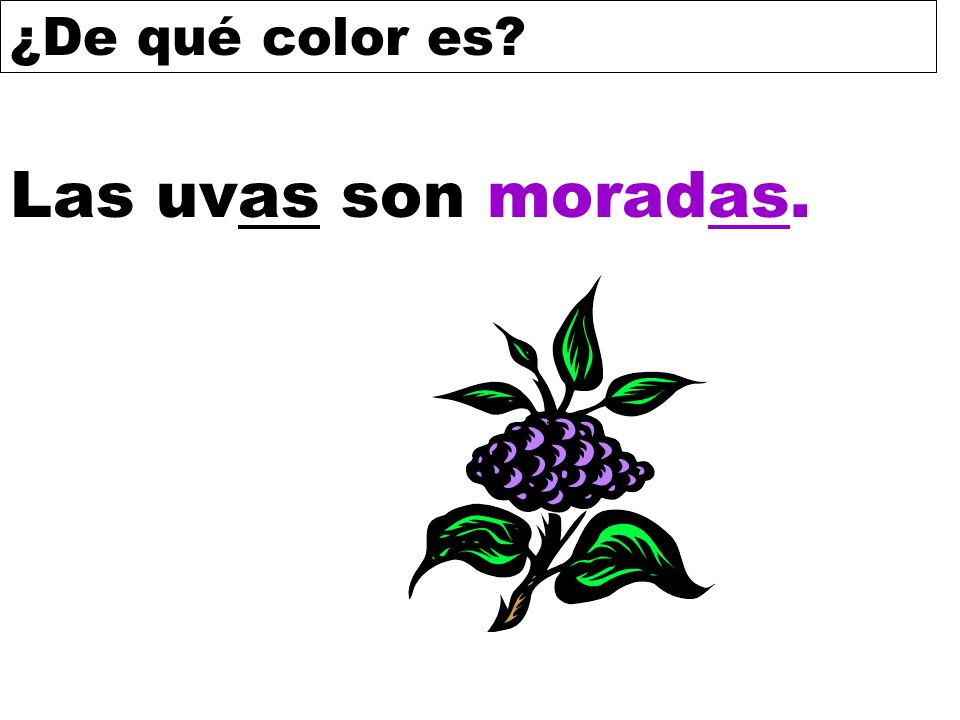 ¿De qué color es? Las uvas son moradas.