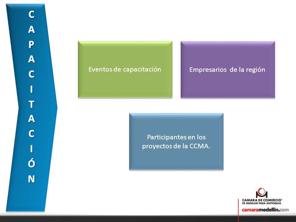 Desarrollo de las actividades de los proyectos Permiten identificar temas puntuales en los que las empresas presentan debilidades y requieren programas de capacitación.