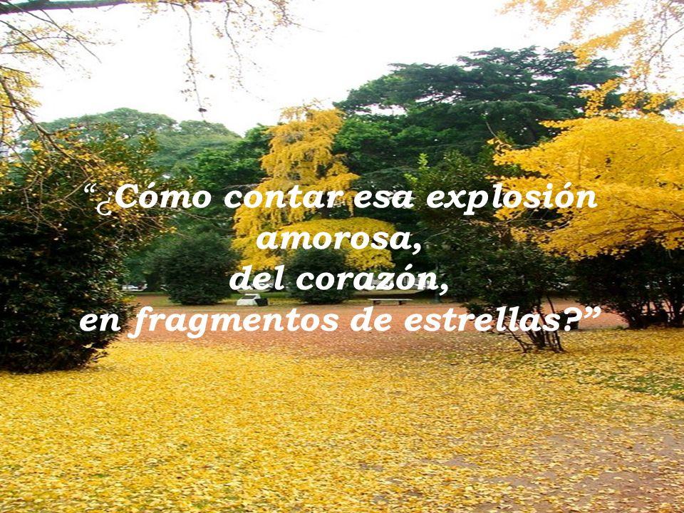 ¿ Cómo contar esa explosión amorosa, del corazón, en fragmentos de estrellas?