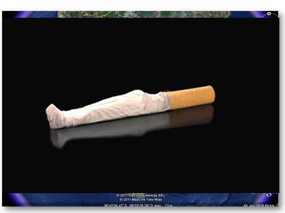 En la República Argentina, directa e indirectamente, el tabaco mata a 40 mil personas por año. Esta cifra indica que se registran 110 muertes diarias