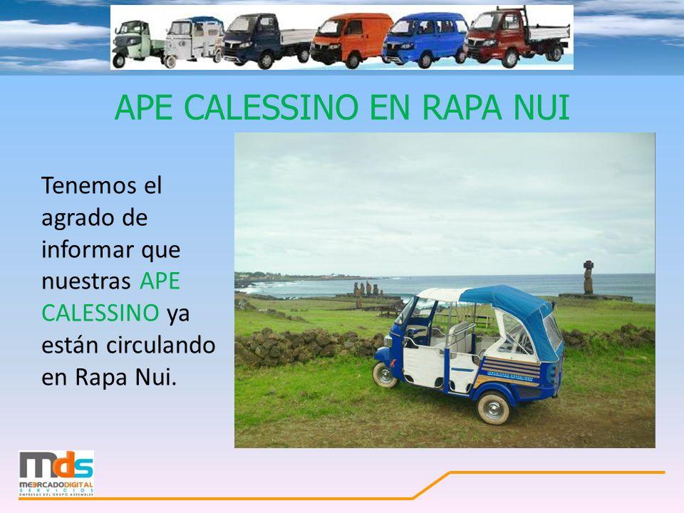 APE CALESSINO EN RAPA NUI Tenemos el agrado de informar que nuestras APE CALESSINO ya están circulando en Rapa Nui.