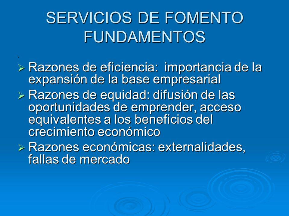 SERVICIOS DE FOMENTO FUNDAMENTOS. Razones de eficiencia: importancia de la expansión de la base empresarial Razones de eficiencia: importancia de la e