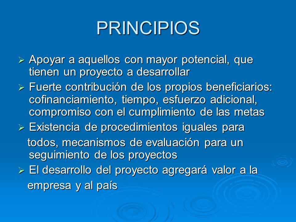 PRINCIPIOS Apoyar a aquellos con mayor potencial, que tienen un proyecto a desarrollar Apoyar a aquellos con mayor potencial, que tienen un proyecto a