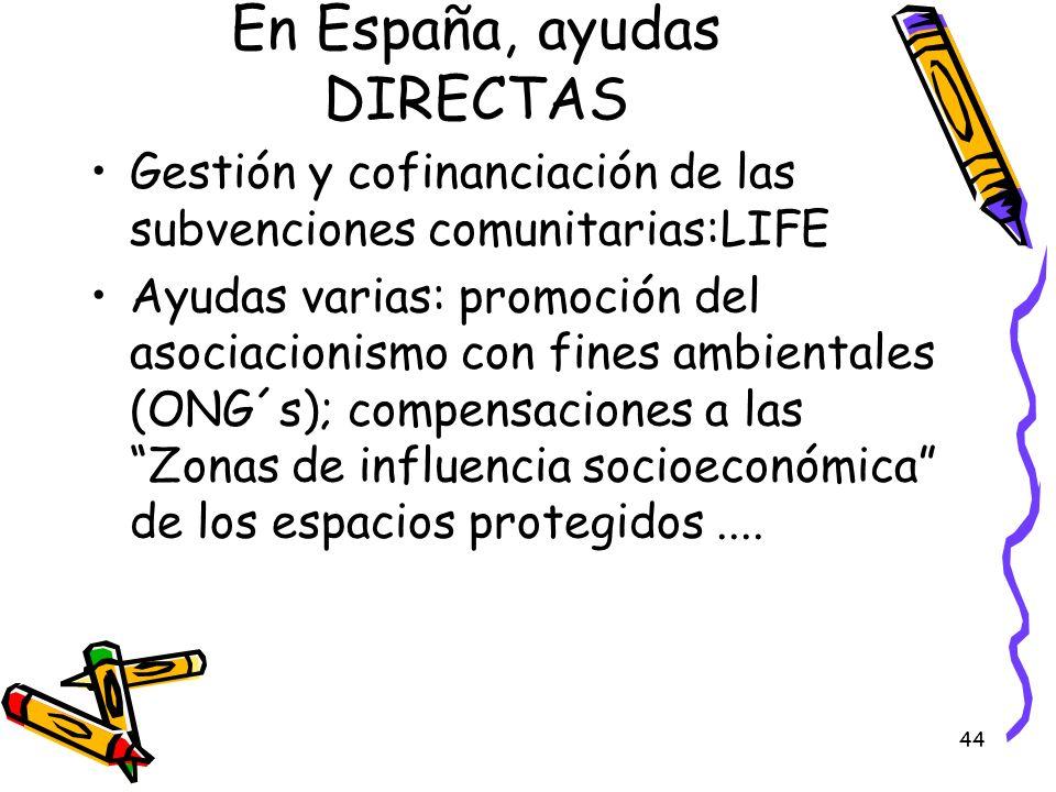 44 En España, ayudas DIRECTAS Gestión y cofinanciación de las subvenciones comunitarias:LIFE Ayudas varias: promoción del asociacionismo con fines amb