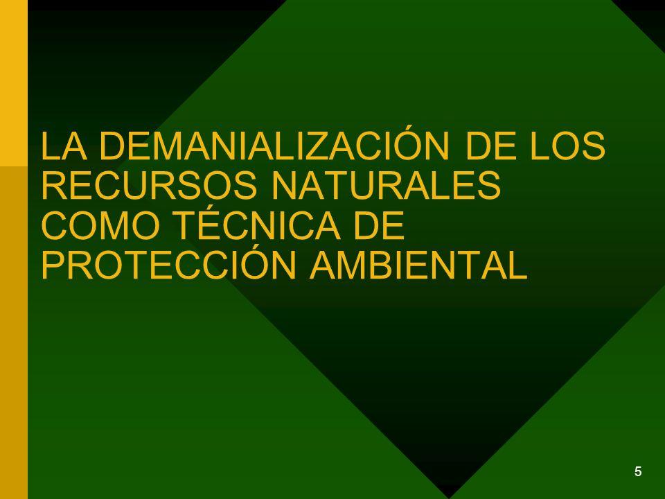 5 LA DEMANIALIZACIÓN DE LOS RECURSOS NATURALES COMO TÉCNICA DE PROTECCIÓN AMBIENTAL