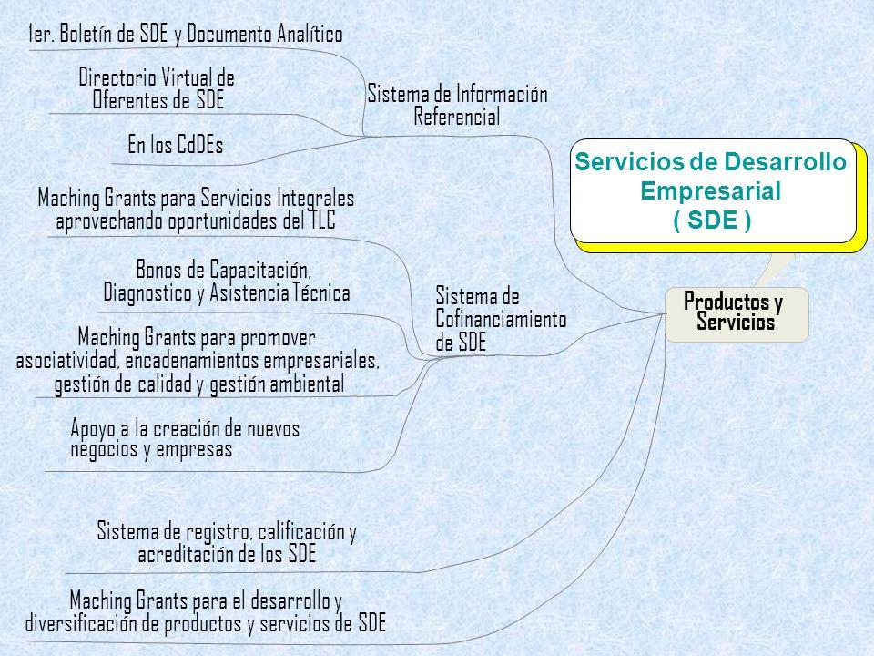 Propuesta de Política Nacional De Fomento de la Competitividad De la MIPYME Sistema de Cofinanciamiento de SDE Sistema de Información Referencial Sistema de registro, calificación y acreditación de los SDE Maching Grants para el desarrollo y diversificación de productos y servicios de SDE Productos y Servicios En los CdDEs Directorio Virtual de Oferentes de SDE 1er.