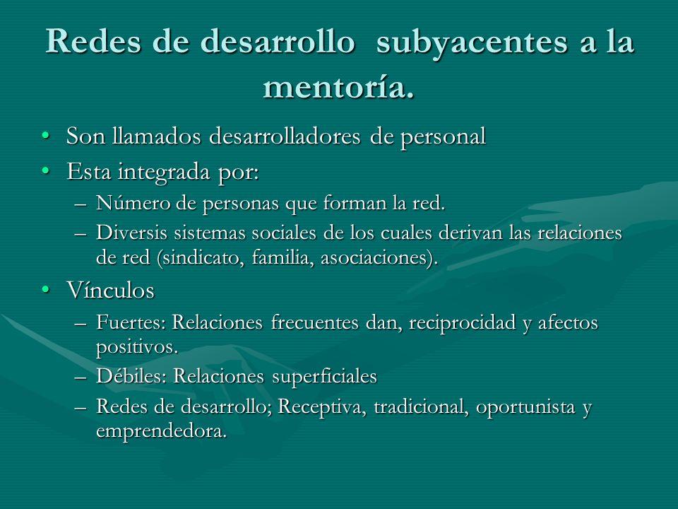 Redes de desarrollo subyacentes a la mentoría.