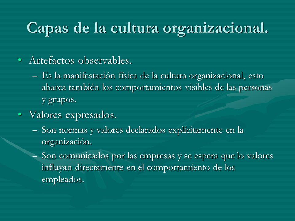 Capas de la cultura organizacional. Artefactos observables.Artefactos observables. –Es la manifestación física de la cultura organizacional, esto abar
