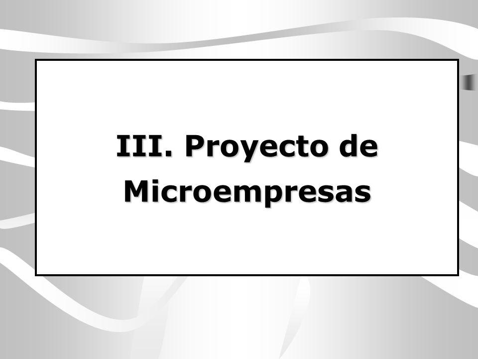 III. Proyecto de Microempresas