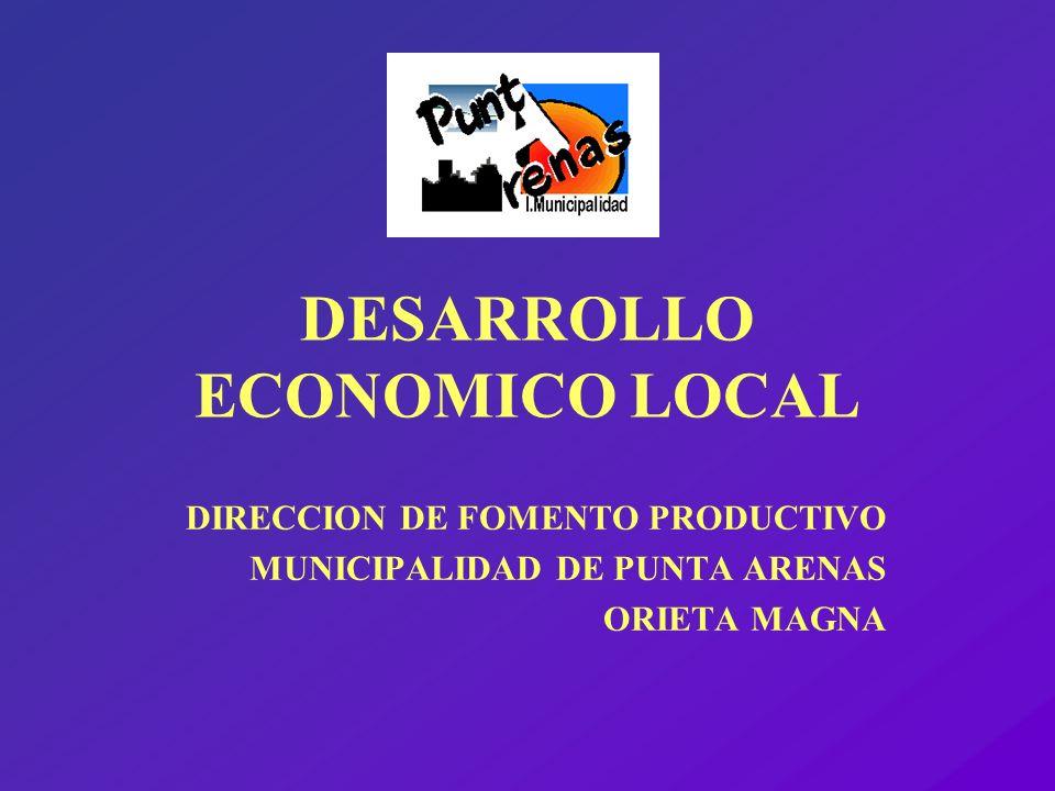 MISION DE LA DIRECCION Dirección nace como respuesta a una necesidad latente en la comuna de Punta Arenas: n Crear y consolidar desde el Municipio una capacidad de gestión en materias de Fomento de la actividad productiva a nivel local, procurando el apoyo a iniciativas de desarrollo de personas, micro y pequeñas empresas, como nexo entre éstas y la institucionalidad pública regional.