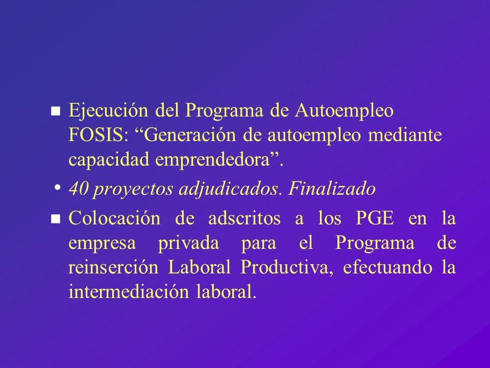 n Ejecución del Programa de Autoempleo FOSIS: Generación de autoempleo mediante capacidad emprendedora. 40 proyectos adjudicados. Finalizado n Colocac