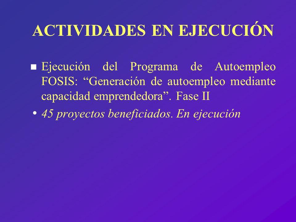 ACTIVIDADES EN EJECUCIÓN n Ejecución del Programa de Autoempleo FOSIS: Generación de autoempleo mediante capacidad emprendedora. Fase II 45 proyectos