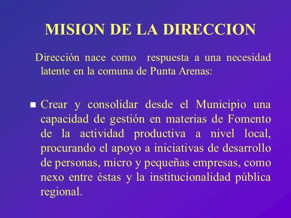 MISION DE LA DIRECCION Dirección nace como respuesta a una necesidad latente en la comuna de Punta Arenas: n Crear y consolidar desde el Municipio una