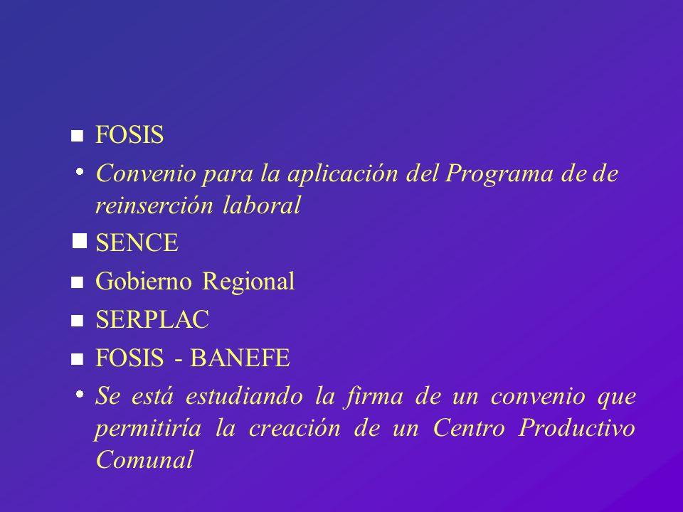n FOSIS Convenio para la aplicación del Programa de de reinserción laboral SENCE n Gobierno Regional n SERPLAC n FOSIS - BANEFE Se está estudiando la
