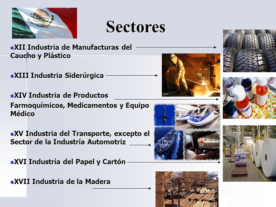 XII Industria de Manufacturas del Caucho y Plástico XII Industria de Manufacturas del Caucho y Plástico XIII Industria Siderúrgica XIII Industria Side