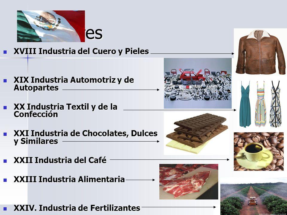 Sectores XVIII Industria del Cuero y Pieles XVIII Industria del Cuero y Pieles XIX Industria Automotriz y de Autopartes XIX Industria Automotriz y de