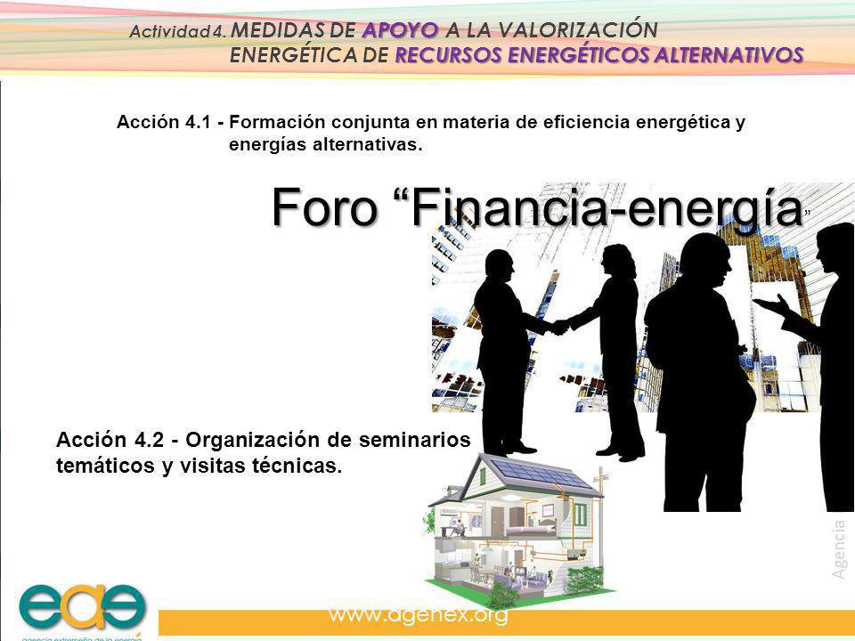 Agencia Extremeña de la Energía. www.agenex.org APOYO Actividad 4. MEDIDAS DE APOYO A LA VALORIZACIÓN RECURSOS ENERGÉTICOS ALTERNATIVOS ENERGÉTICA DE