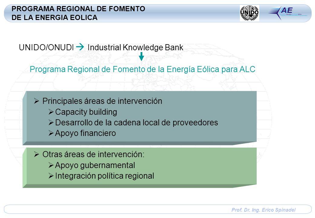 Prof. Dr. Ing. Erico Spinadel UNIDO/ONUDI Industrial Knowledge Bank Programa Regional de Fomento de la Energía Eólica para ALC Principales áreas de in