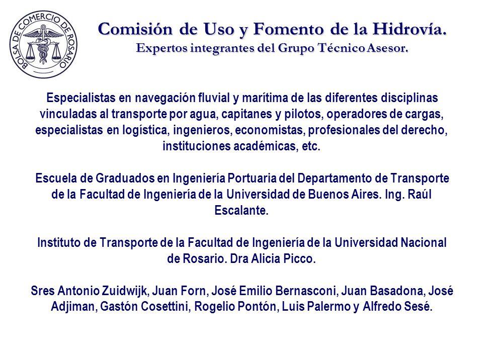 Comisión de Uso y Fomento de la Hidrovía.Expertos integrantes del Grupo Técnico Asesor.
