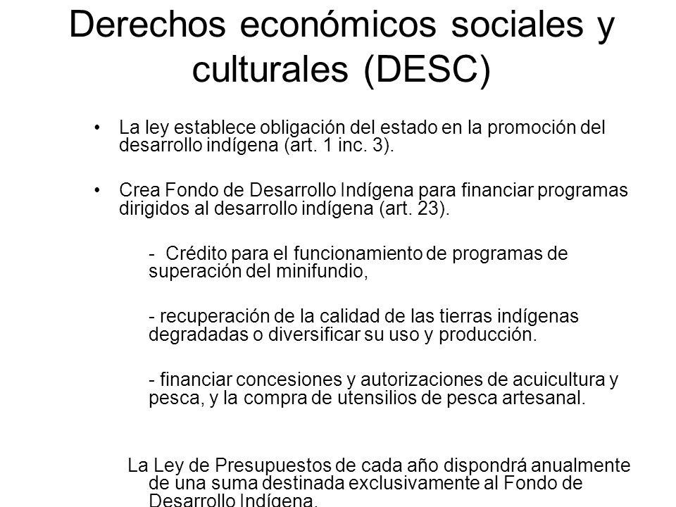 Derechos económicos sociales y culturales (DESC) La ley establece obligación del estado en la promoción del desarrollo indígena (art. 1 inc. 3). Crea