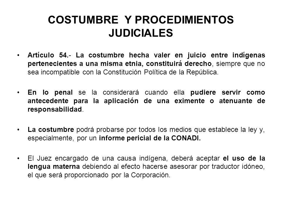 COSTUMBRE Y PROCEDIMIENTOS JUDICIALES Artículo 54.- La costumbre hecha valer en juicio entre indígenas pertenecientes a una misma etnia, constituirá d