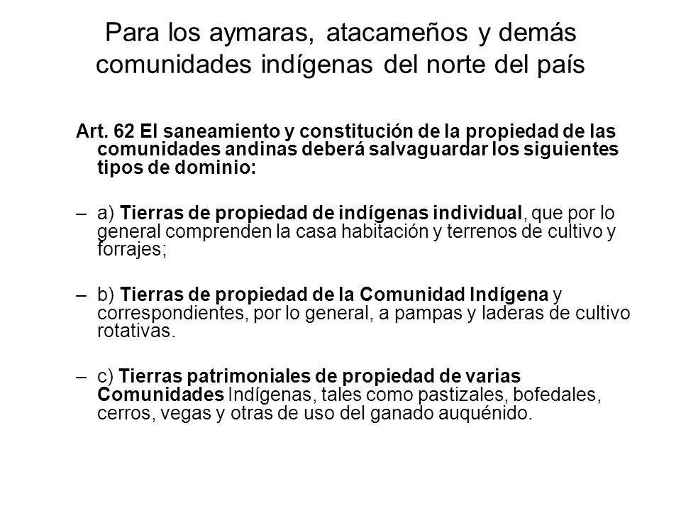 Para los aymaras, atacameños y demás comunidades indígenas del norte del país Art. 62 El saneamiento y constitución de la propiedad de las comunidades