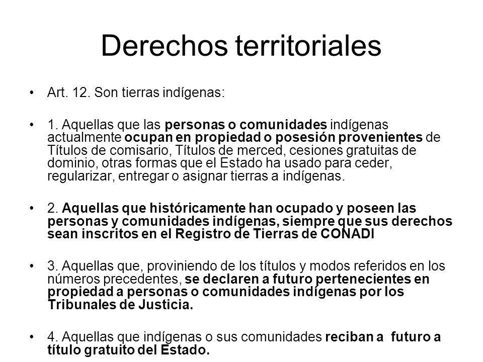 Derechos territoriales Art. 12. Son tierras indígenas: 1. Aquellas que las personas o comunidades indígenas actualmente ocupan en propiedad o posesión