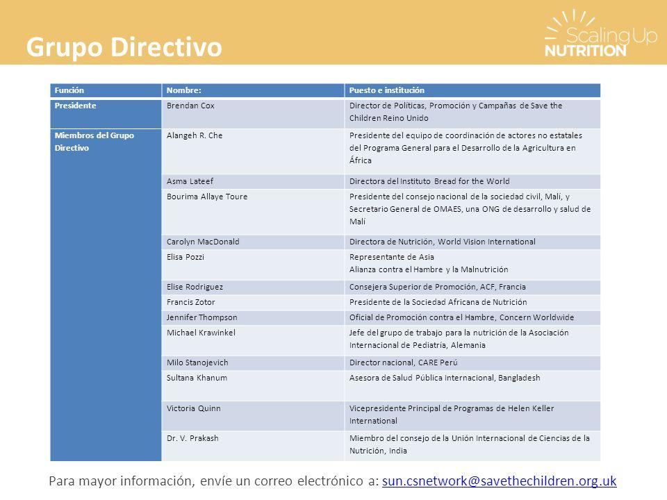 Grupo Directivo FunciónNombre:Puesto e institución PresidenteBrendan Cox Director de Políticas, Promoción y Campañas de Save the Children Reino Unido