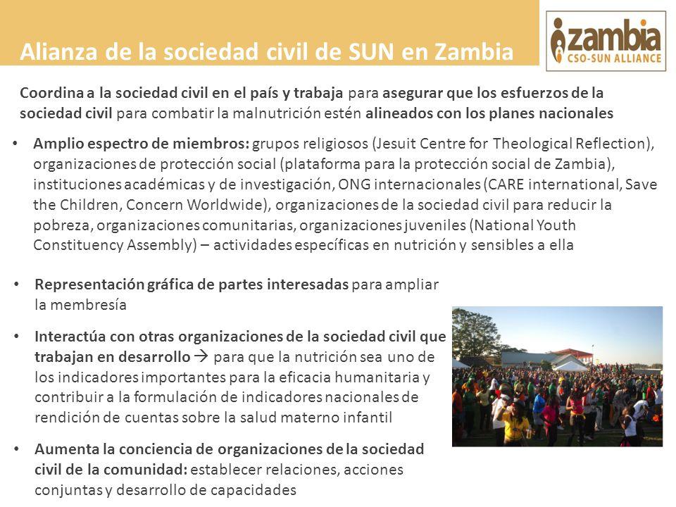Alianza de la sociedad civil de SUN en Zambia Amplio espectro de miembros: grupos religiosos (Jesuit Centre for Theological Reflection), organizacione