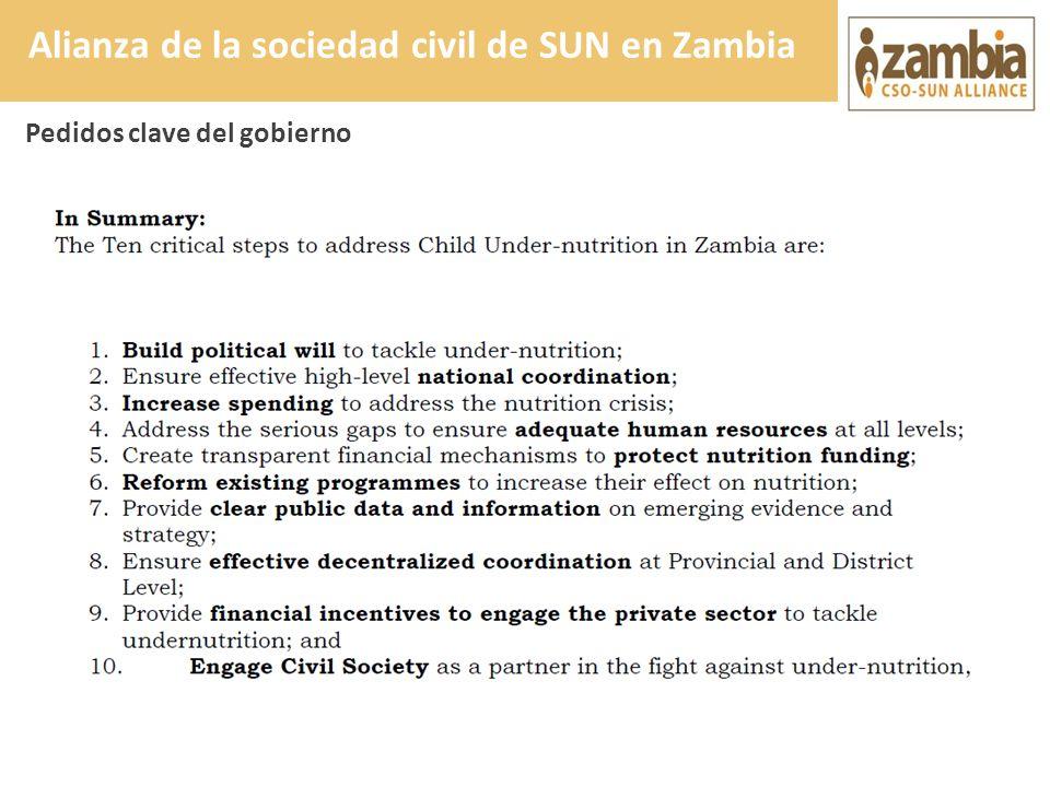 Pedidos clave del gobierno Alianza de la sociedad civil de SUN en Zambia