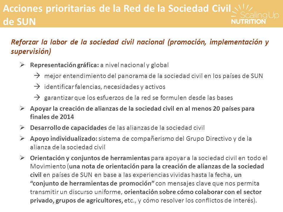 Acciones prioritarias de la Red de la Sociedad Civil de SUN Reforzar la labor de la sociedad civil nacional (promoción, implementación y supervisión)