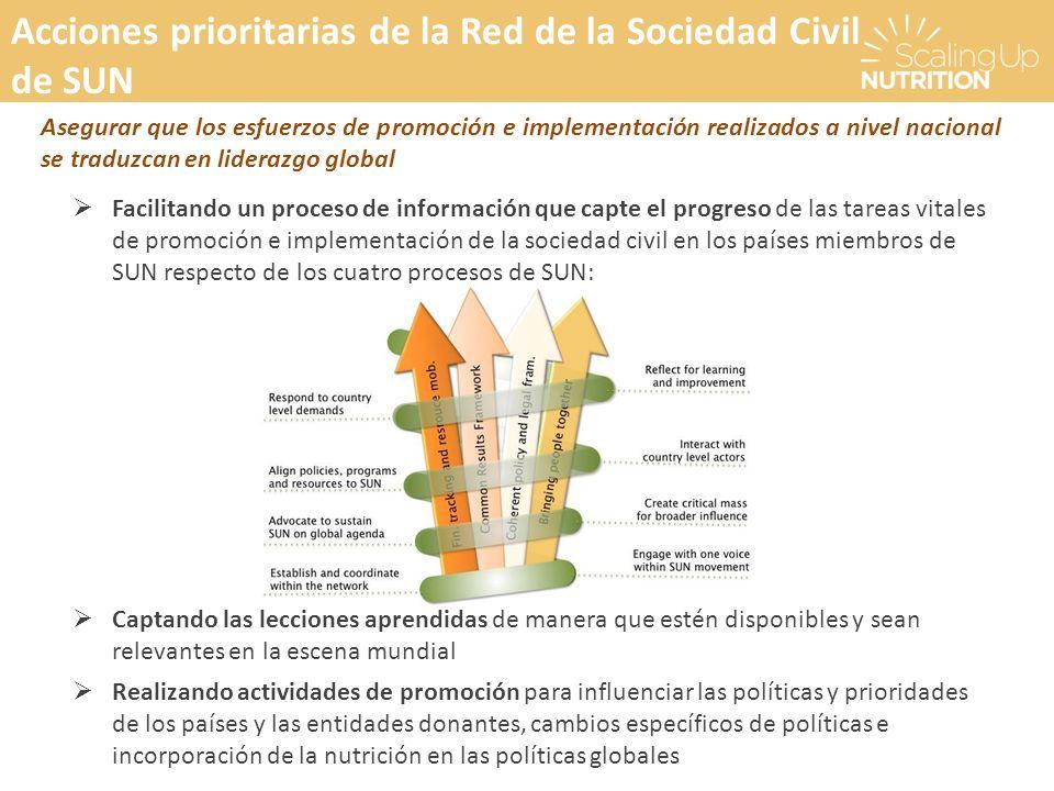 Acciones prioritarias de la Red de la Sociedad Civil de SUN Asegurar que los esfuerzos de promoción e implementación realizados a nivel nacional se tr