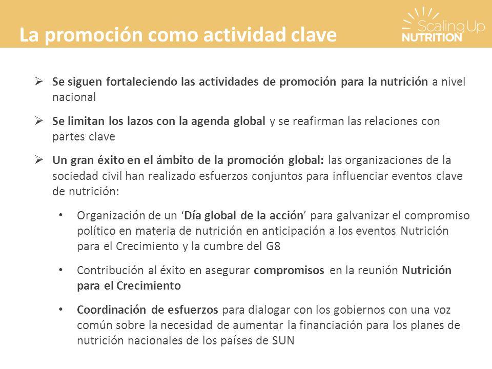 La promoción como actividad clave Se siguen fortaleciendo las actividades de promoción para la nutrición a nivel nacional Se limitan los lazos con la