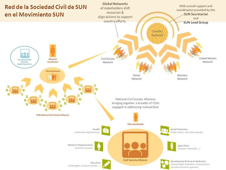 El enfoque de SUN Red de la Sociedad Civil de SUN en el Movimiento SUN