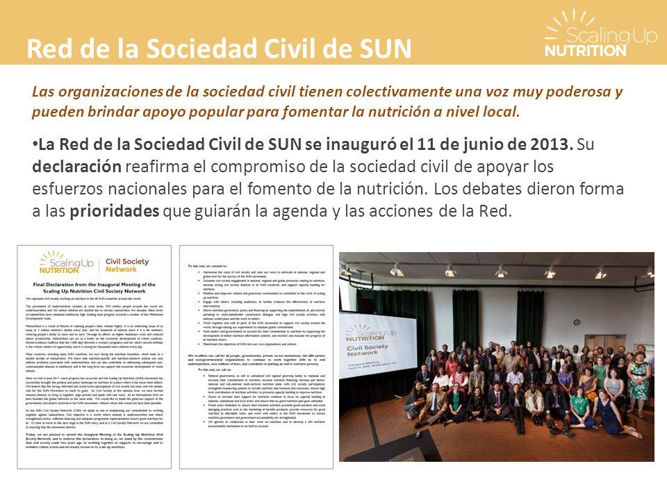 Red de la Sociedad Civil de SUN Las organizaciones de la sociedad civil tienen colectivamente una voz muy poderosa y pueden brindar apoyo popular para