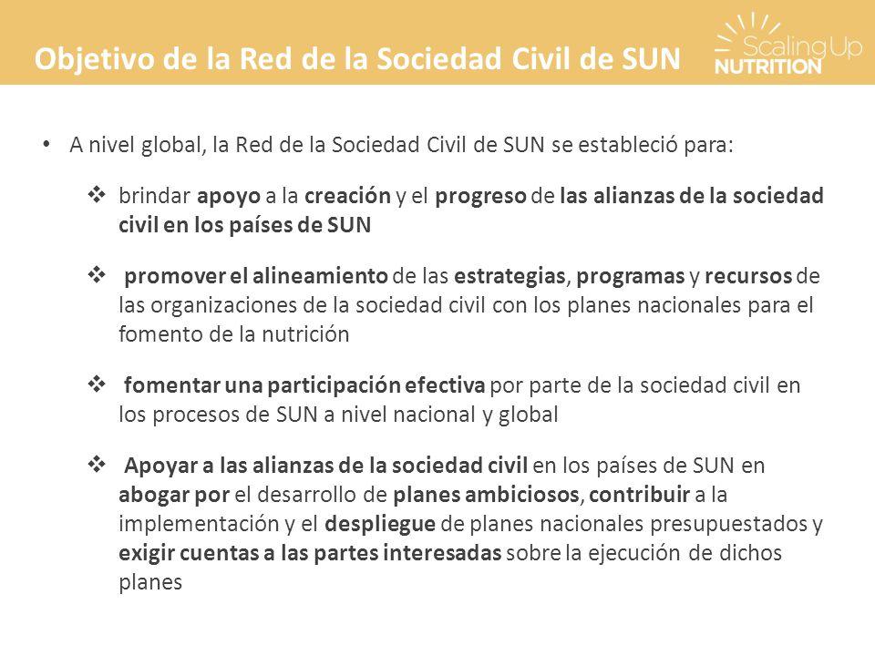 Objetivo de la Red de la Sociedad Civil de SUN A nivel global, la Red de la Sociedad Civil de SUN se estableció para: brindar apoyo a la creación y el