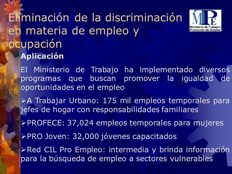 Eliminación de la discriminación en materia de empleo y ocupación Aplicación El Ministerio de Trabajo ha implementado diversos programas que buscan pr