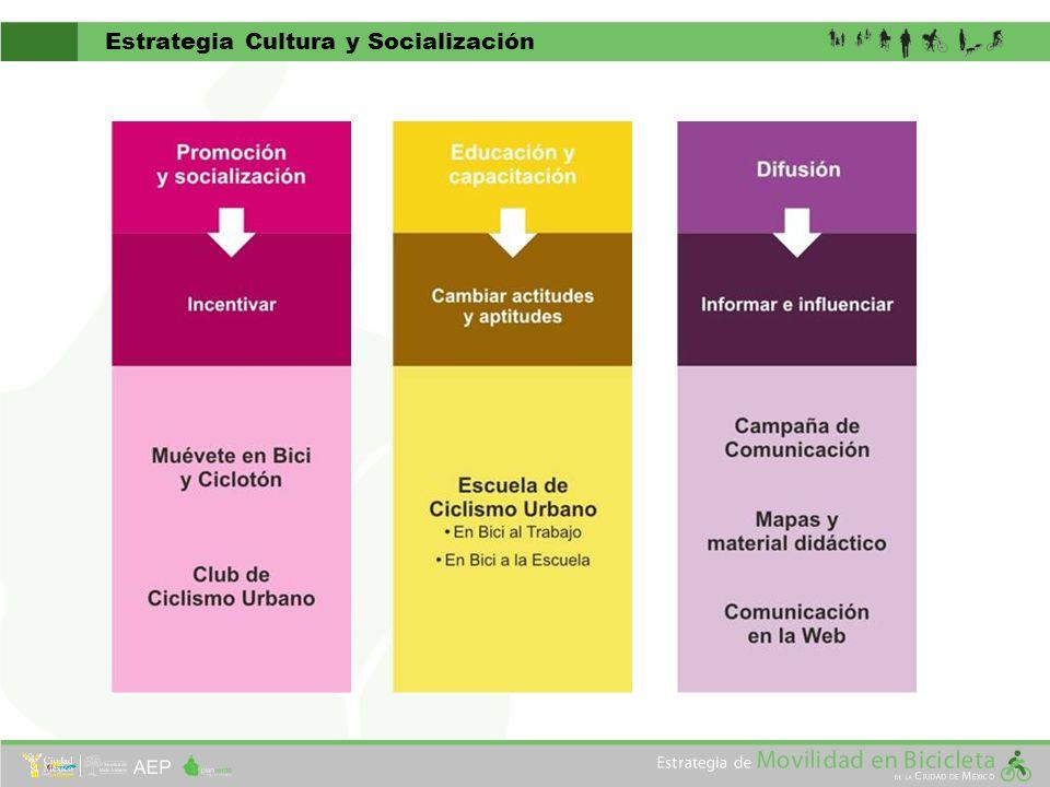 Estrategia Cultura y Socialización